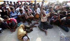 """مآساة """"الروهينجا"""" تبرهن على خطورة غياب """"ثقافة…: تبرهن مآساة الأقلية المسلمة في ميانمار والمعروفة """"بالروهينجا"""" على خطورة غياب """"ثقافة التسامح…"""