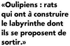 """Résultat de recherche d'images pour """"oulipo"""""""