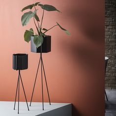 beautiful functional plant stands that encourage creativity with greenery design twins plant stands planters pinterest