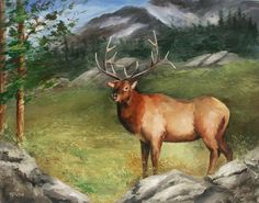 DVD1112 Painting the Elk- Wildlife Education Series - Jansen Art Store