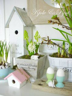 Time to put some birdhouses in the garden! Yeah!