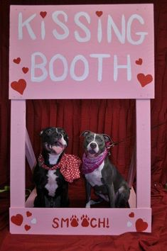 15 Dogs Waiting Patiently For You At Their Kissing Booths - I Can Has Cheezburger?