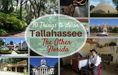 """Authentic Florida shows you Tallahassee, the """"Other Florida""""…"""