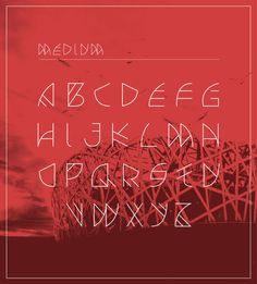 Avian Typeface by Junli Kato, via Behance