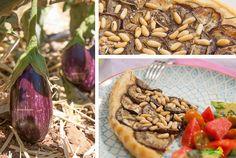 La flor del calabacín: recetas vegetarianas