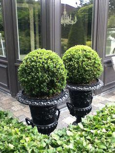 Blijft altijd leuk in de tuin zulke mooie louvre vazen met bol...