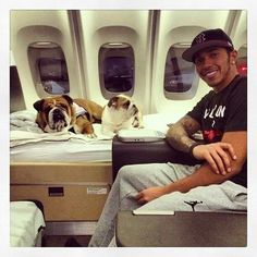 Formula 1 Auto Racing Champion Lewis Hamilton and his pet dog High flyers: UK-bound with Roscoe (left), Coco (centre) Alain Prost, Jackie Stewart, Grand Prix, Lewis Hamilton Formula 1, Jet Privé, Celebrity Dogs, Sports Personality, British Bulldog, Ayrton Senna