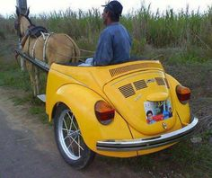 Love it. Bug Buggy