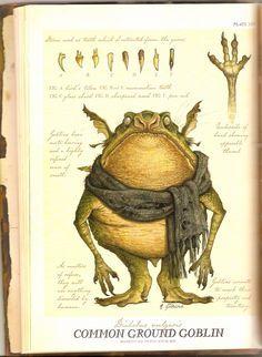 Common Ground Goblin - http://www.femalejokercostume.com