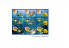 Tiles for the tropical fish matrix. By Autismespektrum. Logic Puzzles, Tropical Fish, Pre School, Habitats, Montessori, Tiles, Homeschool, Ocean, Water