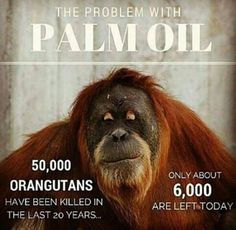 We don't need Palm Oil in our lives but the animals need their home. We do not use Palm Oil in any of our products, keep it natural, keep it clean, live with the environment not against it.