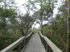 Big Lagoon Boardwalk Perdido Key FL