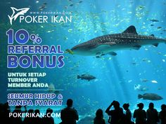 Agen Poker | Judi poker | Bandar Poker | Agen Poker Private Table | Judi Poker 200% Jujur Bebas Robot | Taruhan Poker Paling Fair | Dewa Poker | Main Bersama Teman dan Keluarga Dalam Satu Meja Tanpa Orang Lain www.pokerikan.com/reg.aspx?refer=QKEO4CLBEC