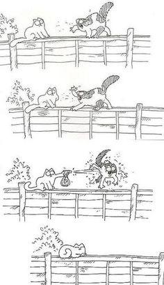 Ik vind de stripjes en filmpjes van Simon's Cat  heel grappig. (Pinterest)
