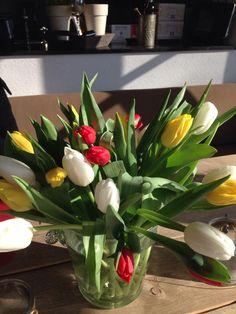 Oeteldonk in tulpen