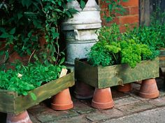 It can't get simpler than this: Terra-cotta flower pots are turned upside down to hold wooden crates full of herbs.