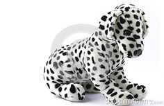 Dalmatian plush dog on white background
