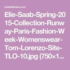 Elie-Saab-Spring-2015-Collection-Runway-Paris-Fashion-Week-Womenswear-Tom-Lorenzo-Site-TLO-10.jpg (750×1125)