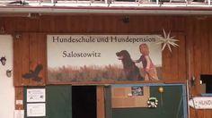 Hundepension - Hundehotel Salostowitz