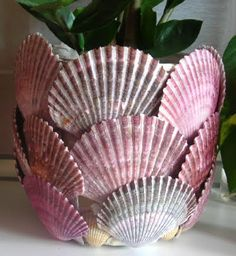 63 Best Scallop Shell Crafts Images Shell Crafts