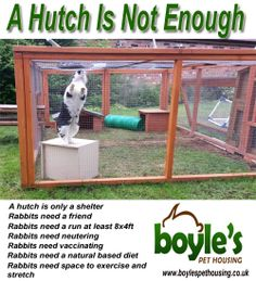 Here is our new poster to help support a hutch is not enough and show that rabbits need more than just a hutch.