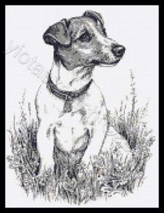 Jack Russell cross stitch kits