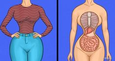 7 Reasons You Shouldn& Wear Shaping Girdles Every Day - 18 illustrations that clearly show which muscles you are stretching - Fitness Tips, Health Fitness, Detox To Lose Weight, Gym Workout Tips, Foot Detox, Vinyasa Yoga, Health And Beauty Tips, Aerobics, Yoga Poses