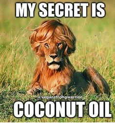 FOR YOUR SHINY MANE! :) ~ Tina