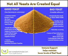 Urban Legend: Eating Yeast Doesn't Cause a Yeast Infection | NutriPlex Formulas