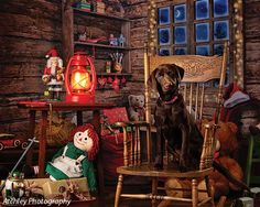Stunning realistic Christmas Backdrop easily create one of a kind holiday portraits with this Old Saint Nick photography Background Christmas Photography Backdrops, Christmas Backdrops, Dog Photos, Holiday Fun, Saints, Holidays, Night, Painting, Beautiful