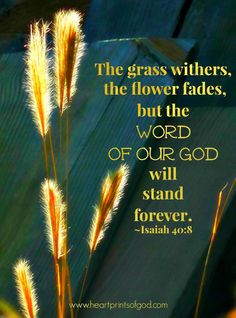 Isaiah 40:8  - The grass withers, the flower fades, but the Word of Our God will stand forever.