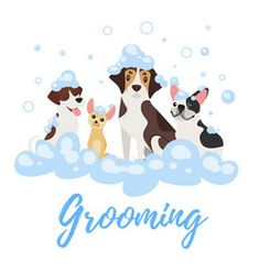 Vector cartoon style illustration of dogs of different breeds in soap foam. Vector ca Free Vector Images, Vector Free, Vector Vector, Vectors, Dog Grooming Styles, Dog Crafts, German Shepherd Dogs, Cartoon Styles, Pet Shop