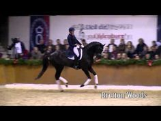 Schockemöhle stallion show 2016 english full - YouTube