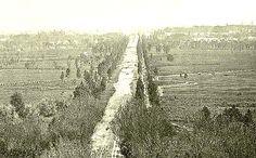 1870s. Paseo de la Reforma