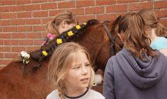Pony spelen op FarmCamps Breehees de meiden zijn druk in de weer. Hooi Hooi! Kids, Young Children, Boys, Children, Boy Babies, Child, Kids Part, Kid, Babies