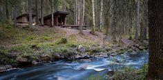 Sanginjoki Finland, Aquarium, Mountains, Water, Plants, Travel, Outdoor, Goldfish Bowl, Gripe Water