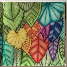 Take a peek at this great artwork on Johanna Basford's Colouring Gallery! Magical Jungle Johanna Basford, Joanna Basford, Secret Garden Coloring Book, Johanna Basford Coloring Book, Leaf Coloring, Colouring Techniques, Coloured Pencils, World Of Color, Art Lesson Plans