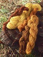 Yarn dyed from Phaeolus schweinitzii