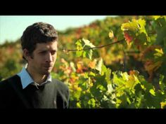 La Ruta del Vino - Episodio 4 | Organgutan Films - Copyright © [http://www.youtube.com/watch?v=t5Z4ghQHOho=share=PLAO3wuSuQ976QoA474XZ0hlmYKyZLFmPU]