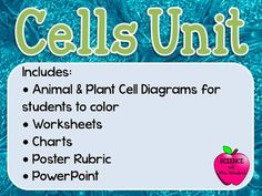 Unit on Cells: Plant & Animal Cells and their organelles or parts This is my Unit on Cells.  I teach 7th Grade Life Science in Georgia and we use GPS.  Included in this zipped file you will get -PowerPoint of 40 slides over cell organelles -Plant Cell Diagram for students to label -Animal Cell Diagram fro students to label -Worksheet Titled The Basics of Cells (students will label diagrams, learn about what things are made of cells, cell theory -Chart with organelles and pictures.
