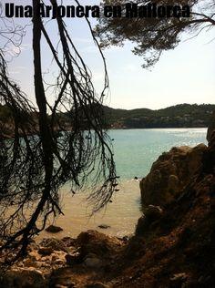 Cala Cranc ( Andratx) #calas #mallorca