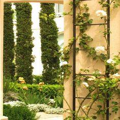 Un Jardin en Benavidez