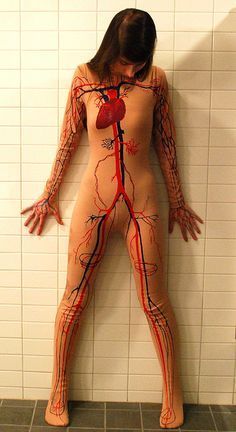 circulatory system - another costume idea