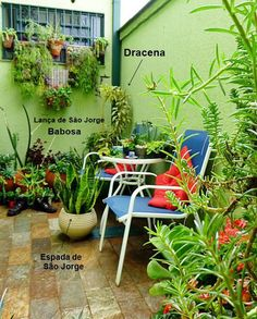 Você acha que é impossível ter um lindo jardim em um pequeno espaço? Não, não é! Pode ser uma varanda, uma sacada, uma área de claridade (jardim de inverno). Quer saber que espécies usar e se é caro ter e manter seu jardinzinho?