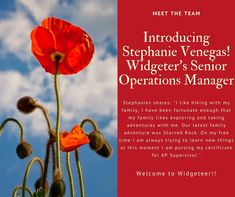 Meet Stephanie, Widgeteer's new Senior Operations Manager! Each week, we will be introducing a new team member. Welcome, Stephanie☺️ Operations Management, Meet The Team, Team Member, Family Adventure, Around The Worlds
