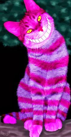 Lindo gatito :-))