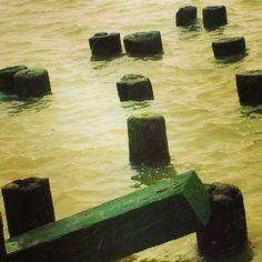 Old pier stumps