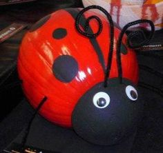 My Lady Bug Winner