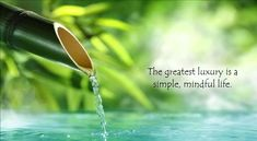 The greatest luxury is a simple, mindful life.