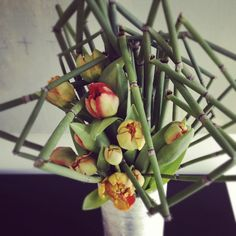 Modern floral design with horse tail and Dutch tulips by GRO designs
